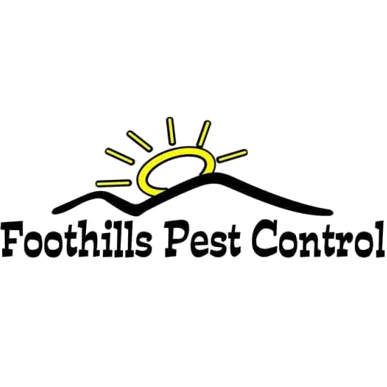 foothills pest control coupons near me in