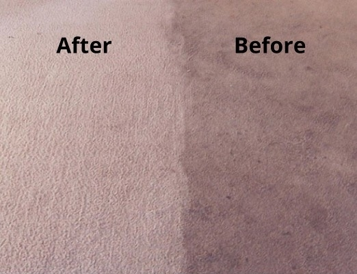 Images Fresh Now Carpet Care