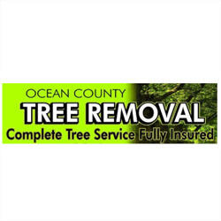 Ocean County Tree Removal