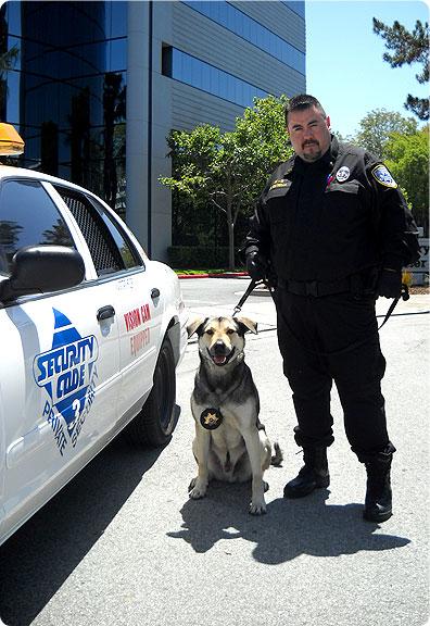 Security Code 3 - San Jose, CA