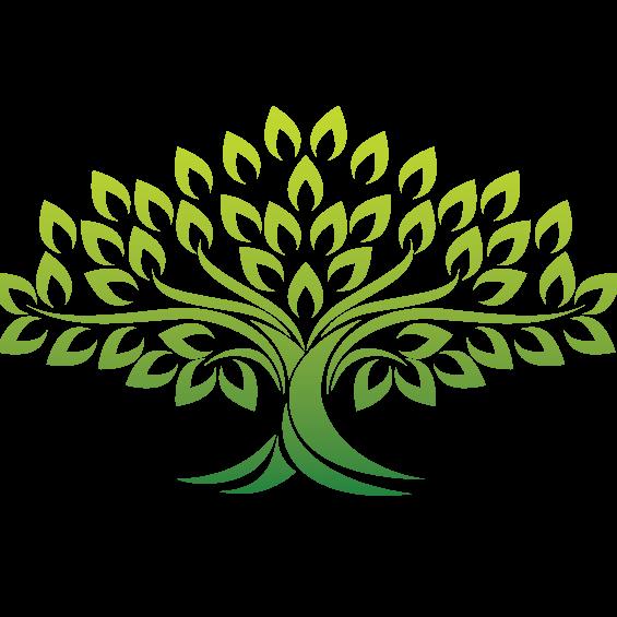 Shady Grove Tree Service