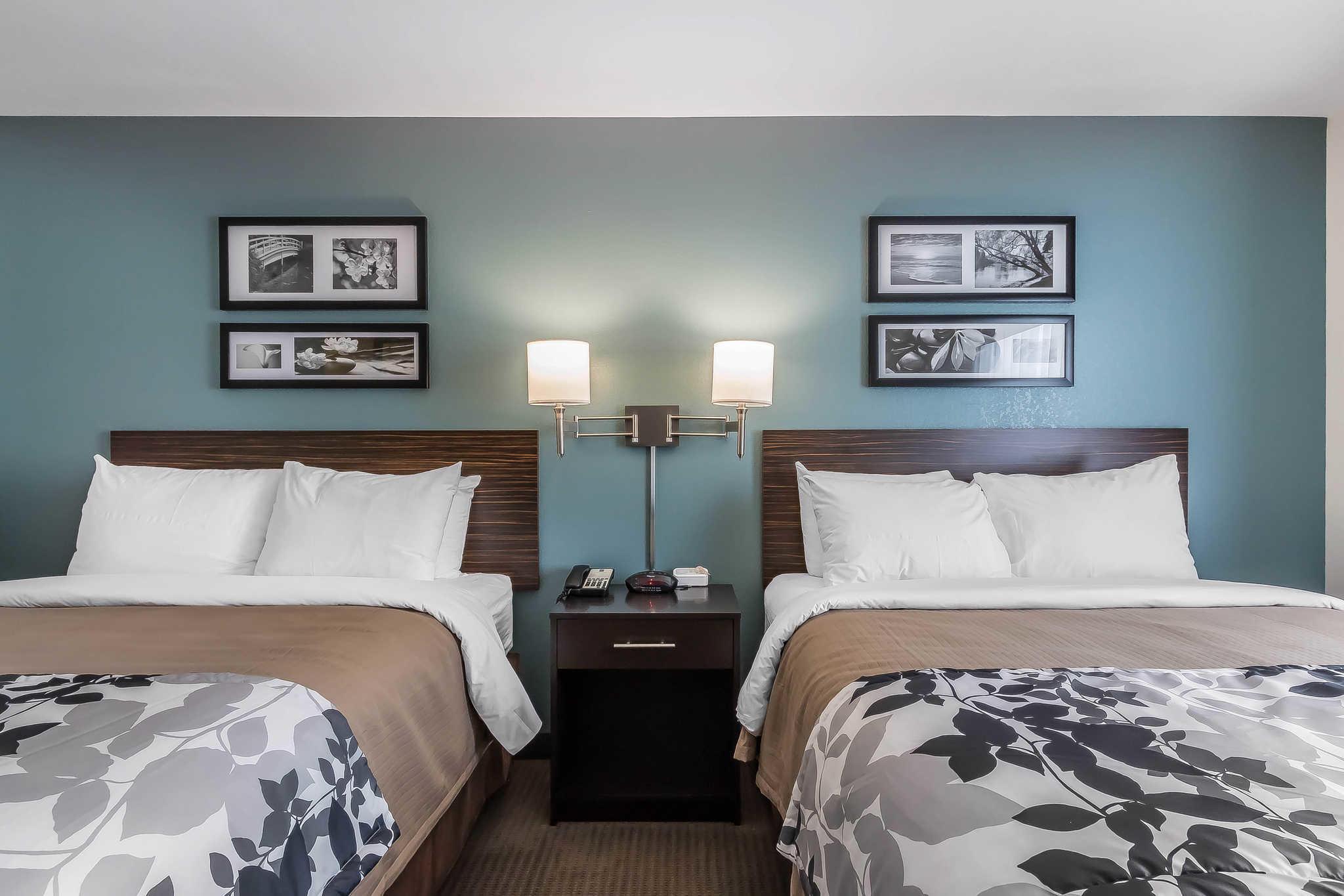 Pet Friendly Hotels St Louis I