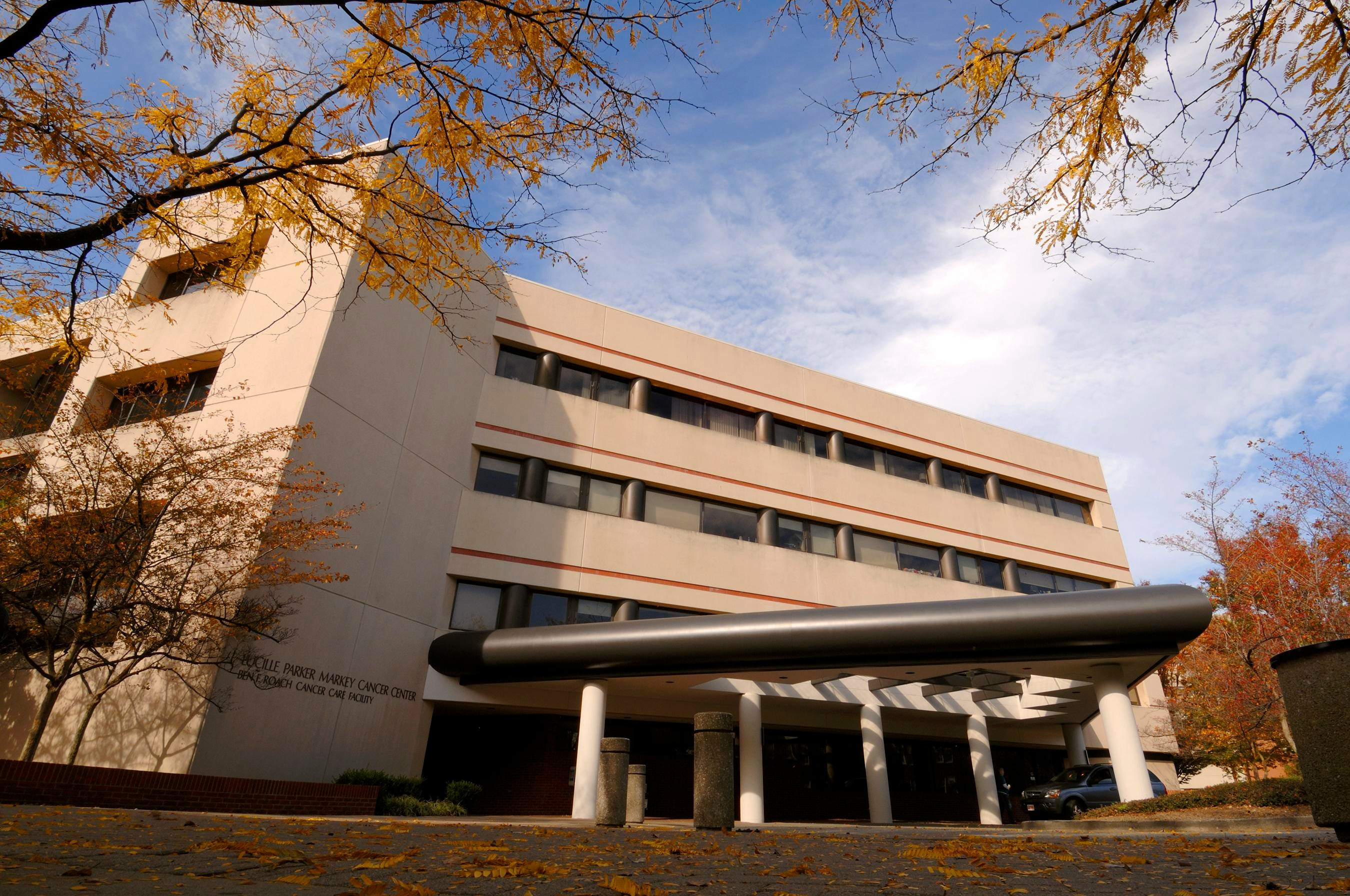 Markey Cancer Foundation (Not the Markey Cancer Center)
