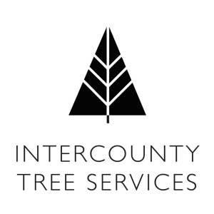 Intercounty Tree Services - Rochford, Essex SS4 1PD - 01702 544488 | ShowMeLocal.com