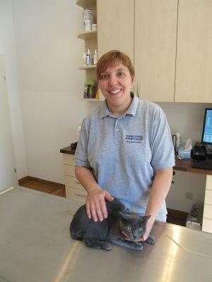 Tierarztpraxis Rankgasse Mag. med. vet. Nina Brabetz