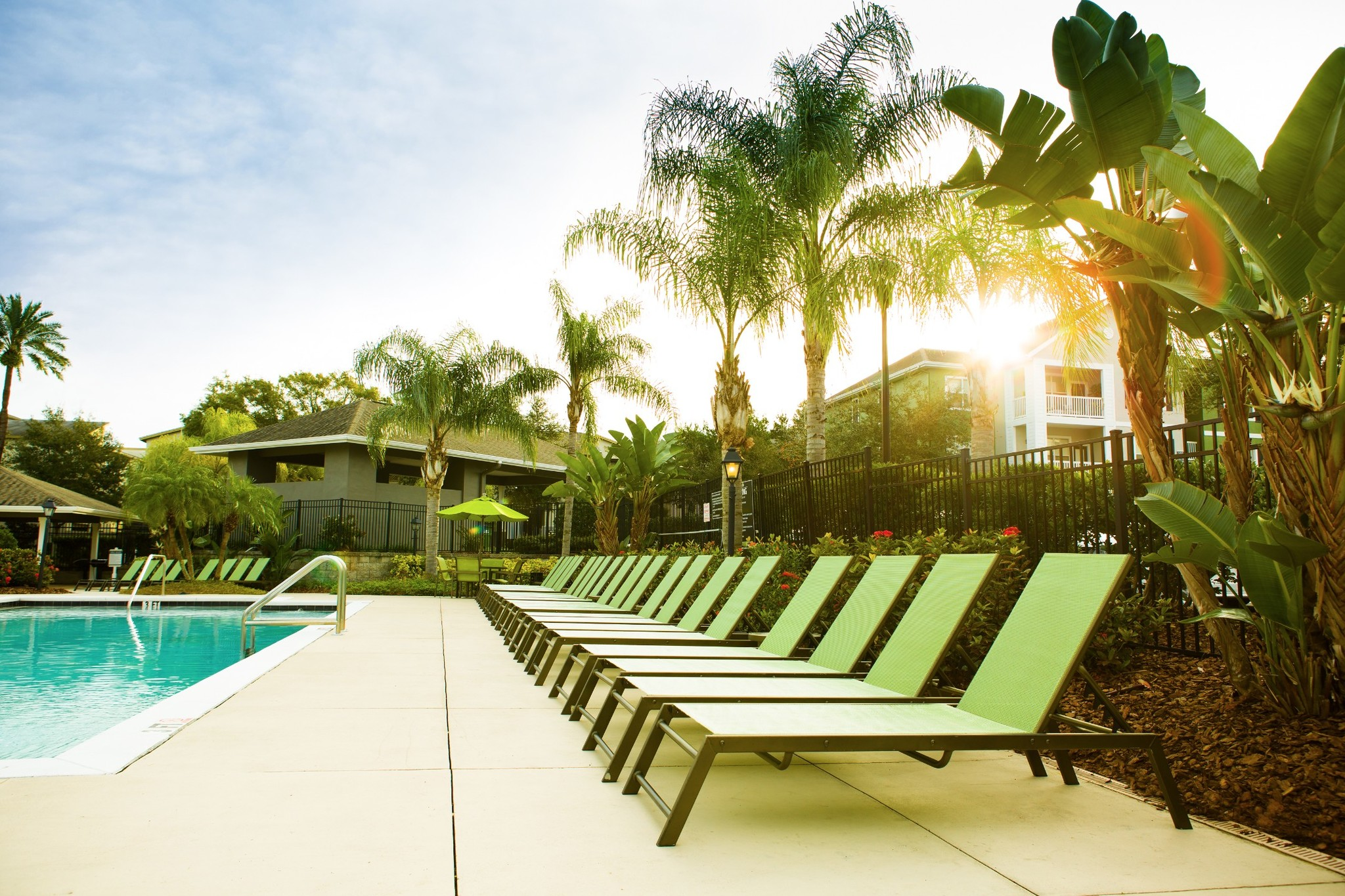 Arbor Walk Apartments Tampa Fl