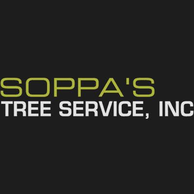 Soppa's Tree Service, Inc. - Rockford, IL - Tree Services