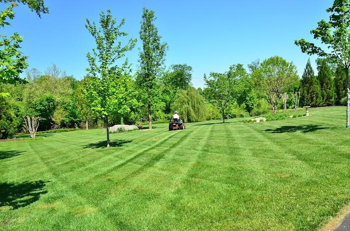 Green Earth Landscaping & Tree Service - Landscaping in Fayetteville, NC - Green Earth Landscaping & Tree Service - Landscaping In Fayetteville