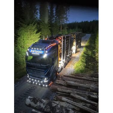 Car Transport Reviews >> Heikki Iso Pellinen Ky Public Transport Services In