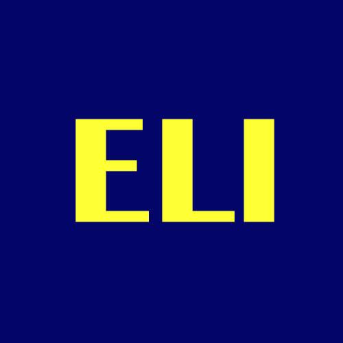 E. L. Ironworks