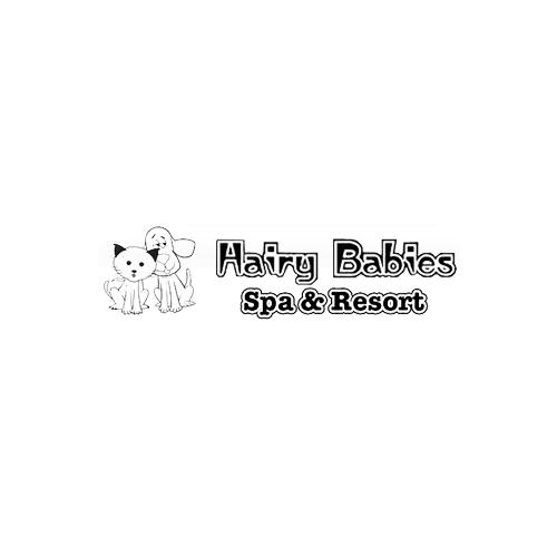 Hairy Babies Spa & Resort - Tuttle, OK - Kennels & Pet Boarding
