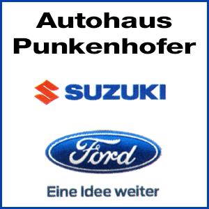 KFZ-Werkstätte Ford u. Suzuki, Punkenhofer Martina in 8983 Bad Mitterndorf Logo