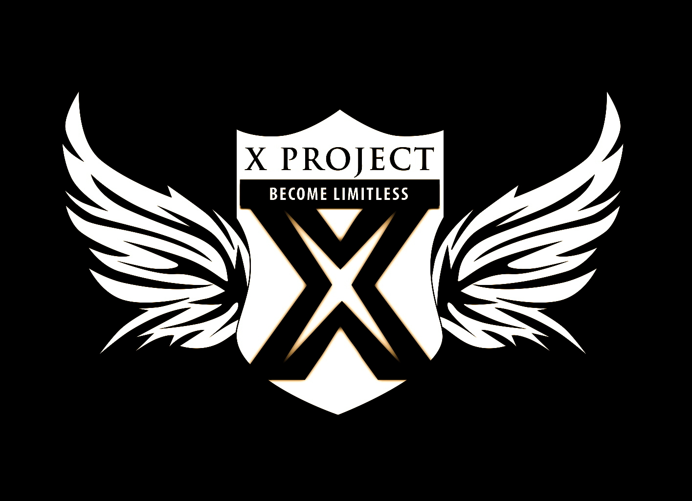 x-project image 5