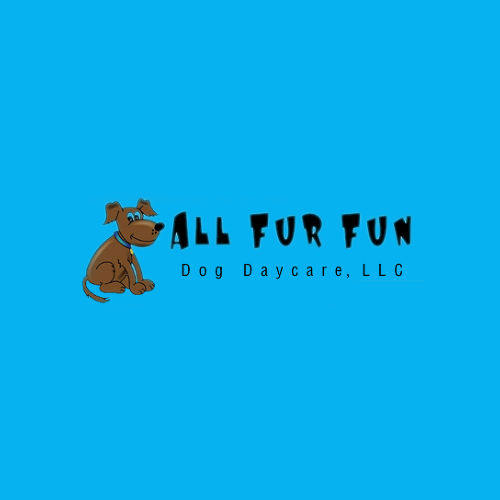 All Fur Fun Dog Daycare LLC