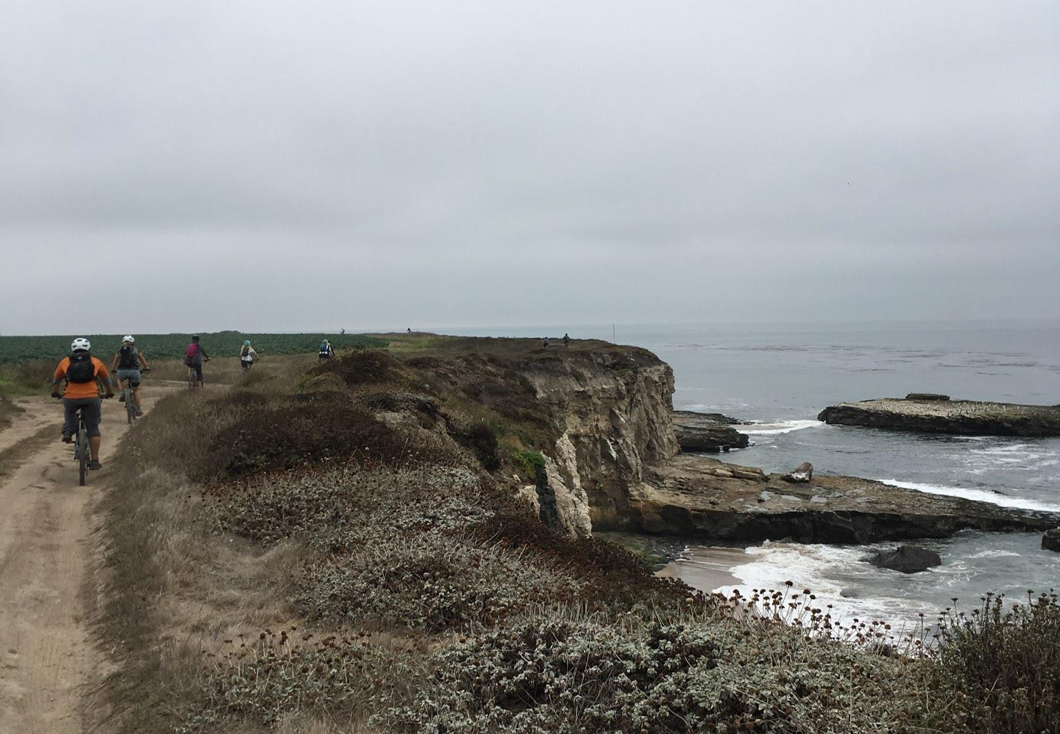 Bike N Brews Tour: Santa Cruz Coast