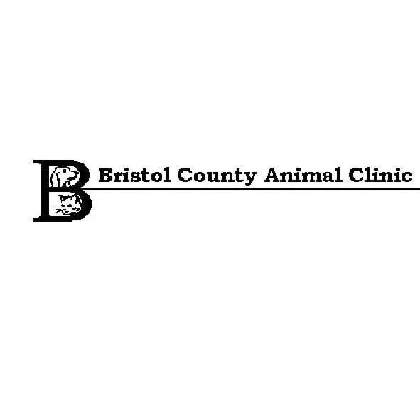 Bristol County Animal Clinic - Thomas D Durniok VMD - Raynham, MA - Veterinarians