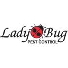 Lady Bug Pest Control