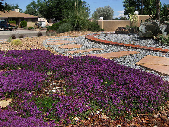 Grass roots landscapes albuquerque new mexico for Landscaping rocks albuquerque