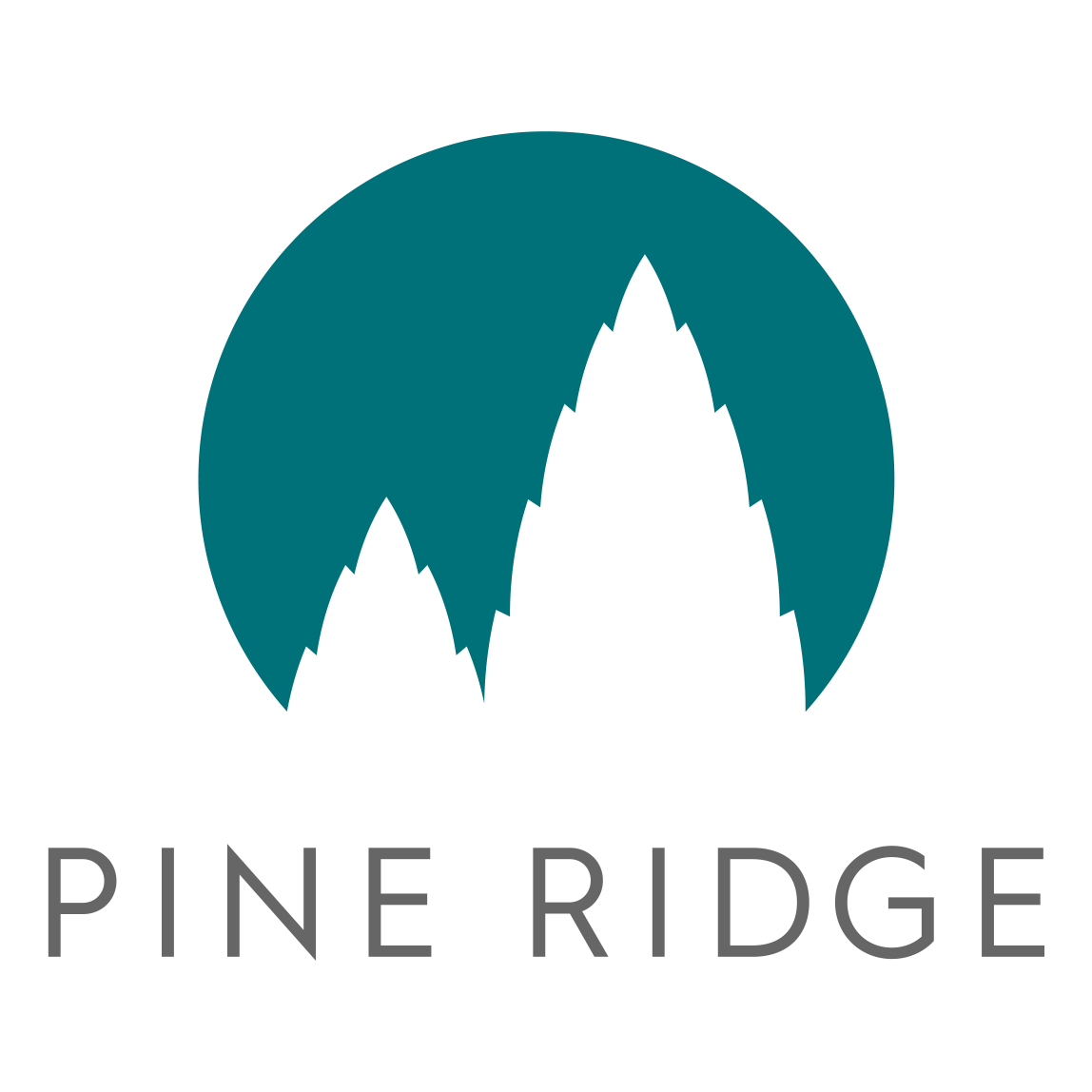 Pine Ridge is under new professional and caring management.