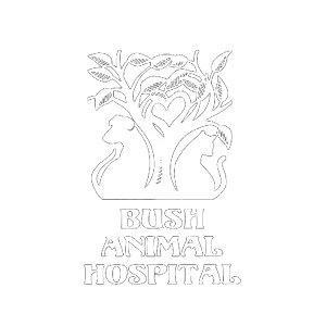 Bush Animal Hospital - Eugene, OR 97401 - (541)342-7218   ShowMeLocal.com