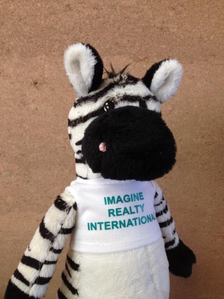 Imagine Realty International