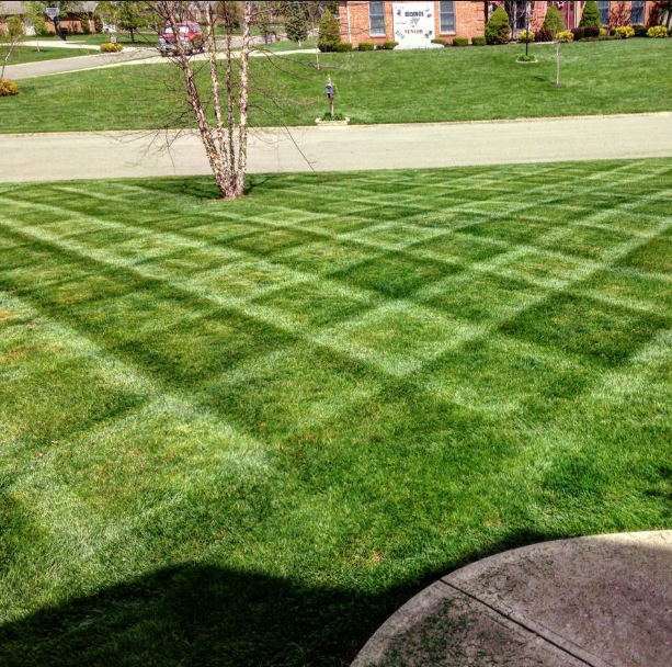 Landscaping services near me midtownkalamazoo home for Landscaping services near me