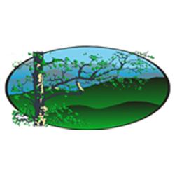 Blue Ridge Termite & Pest Management Group