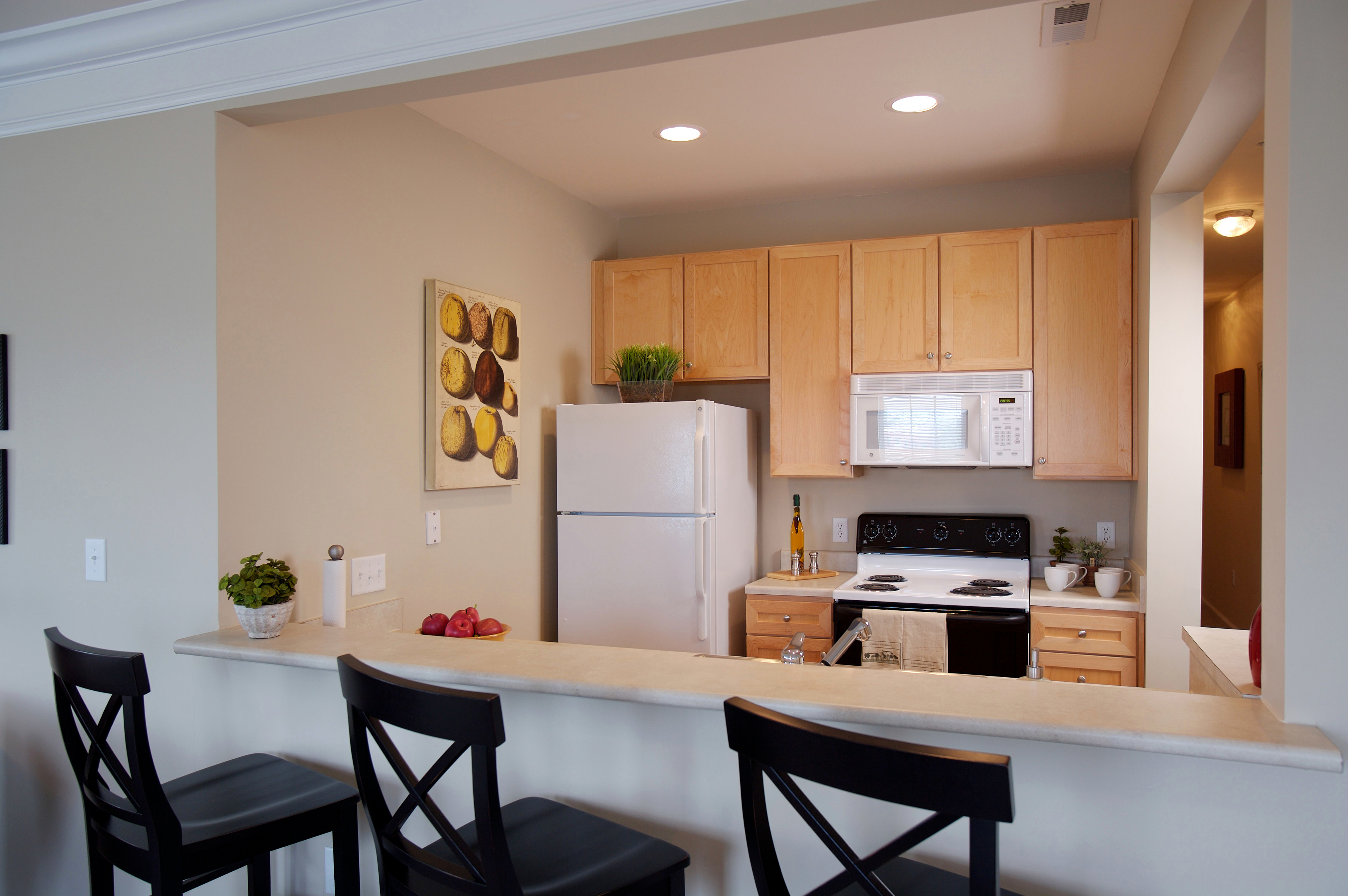 for of one pics uncc charlotte in nc cheap awesome apartments bedroom near new rent