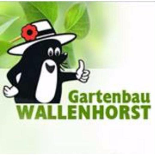 Gartenbau Wallenhorst Pflanzen Fur Haus Und Garten Inhaber