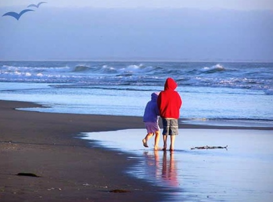 Pajaro Dunes Company and Resort image 8