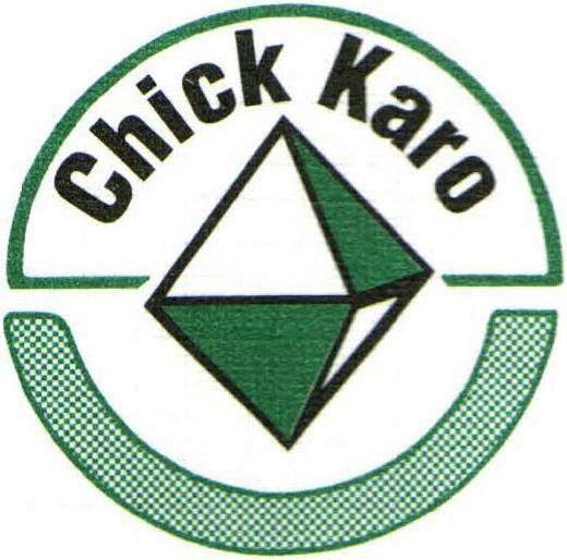 Chick & Karo CPA's PA