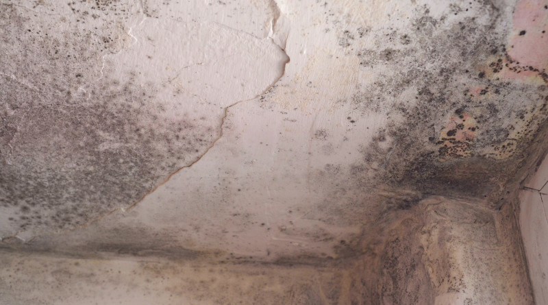 SPRAY FOAM INSULATION CAN BE USED FOR MOISTURE CONTROL IN YOUR HOME.