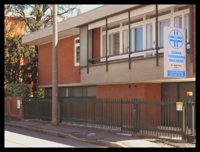 Clinica Veterinaria Gallarate Ferre'