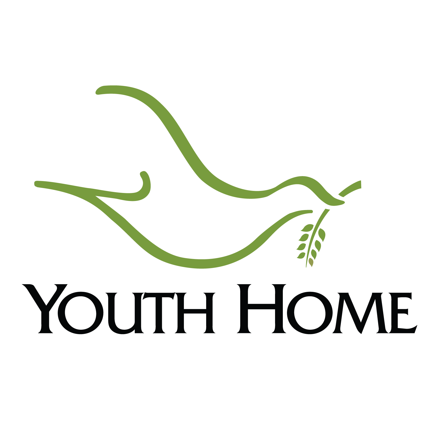 Youth Home Inc.