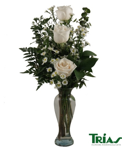 Trias Flowers Amp Gifts Miami Florida Fl Localdatabase Com