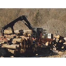 Mdb Logging Inc.