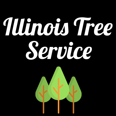 Illinois Tree Service