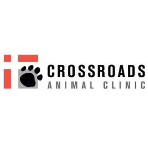 Crossroads Animal Clinic - Houston, TX - Veterinarians