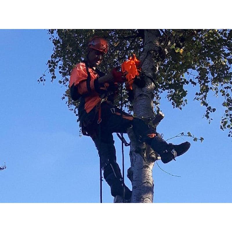 EW-Tree & Garden Services