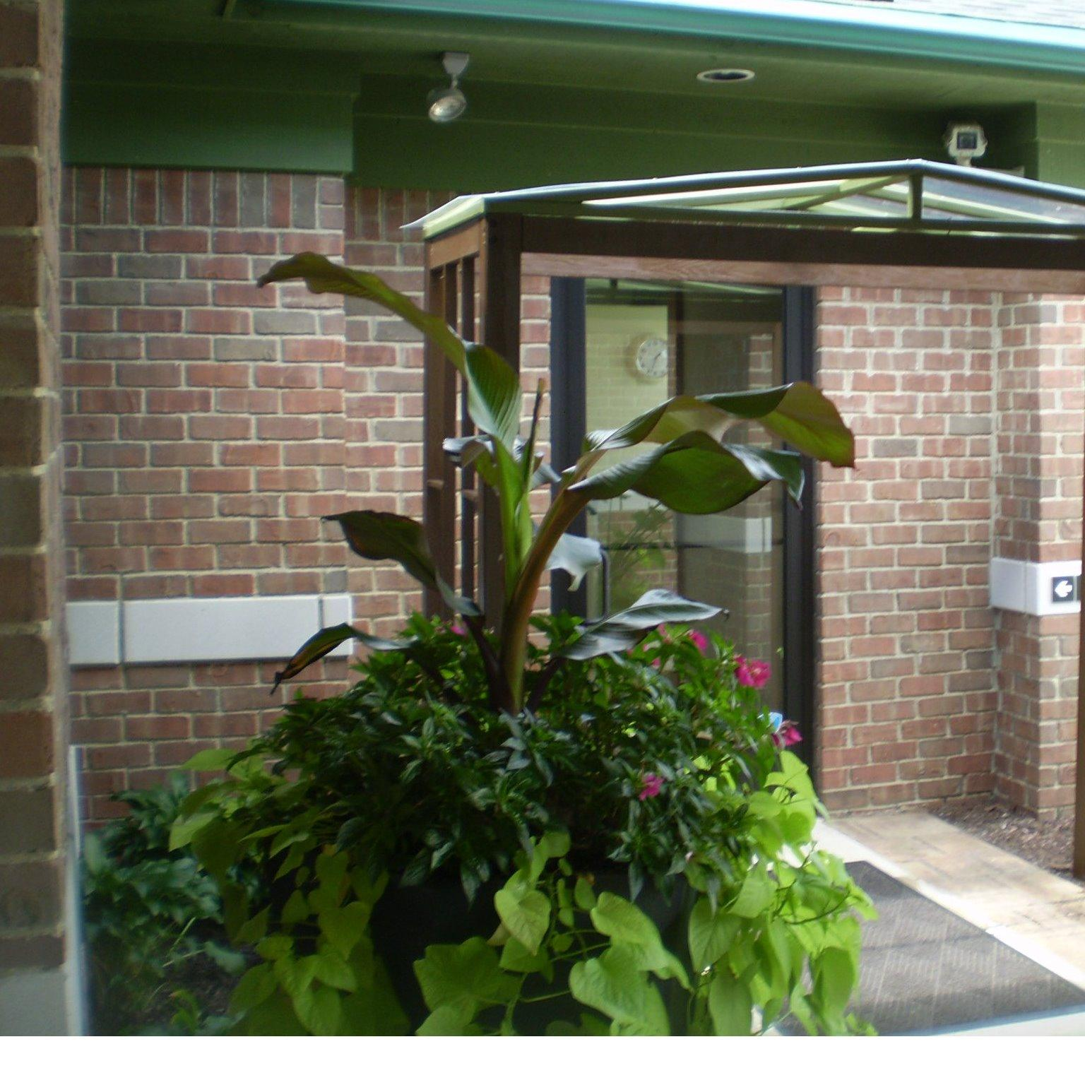 Annie 39 s garden designs llc pontiac mi for Find local garden designers
