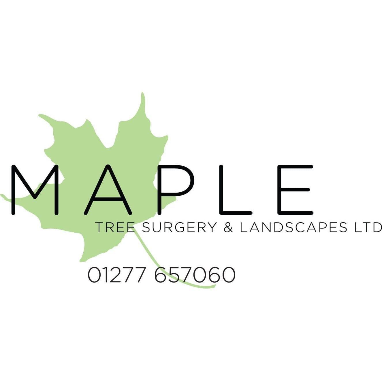 Maple Tree Surgery & Landscapes Ltd