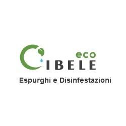Eco Cibele