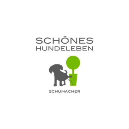 Bild zu Schönes Hundeleben in Krefeld