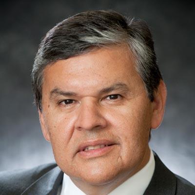 David Briseno MD