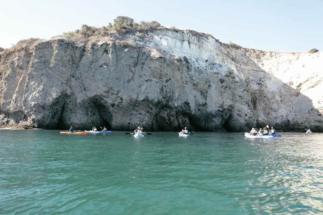 SoCal Wildlife Kayak Tour