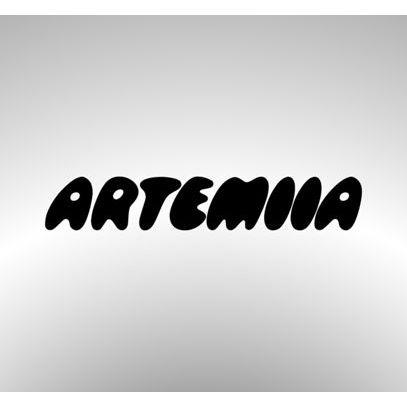 Artemiia Huittinen