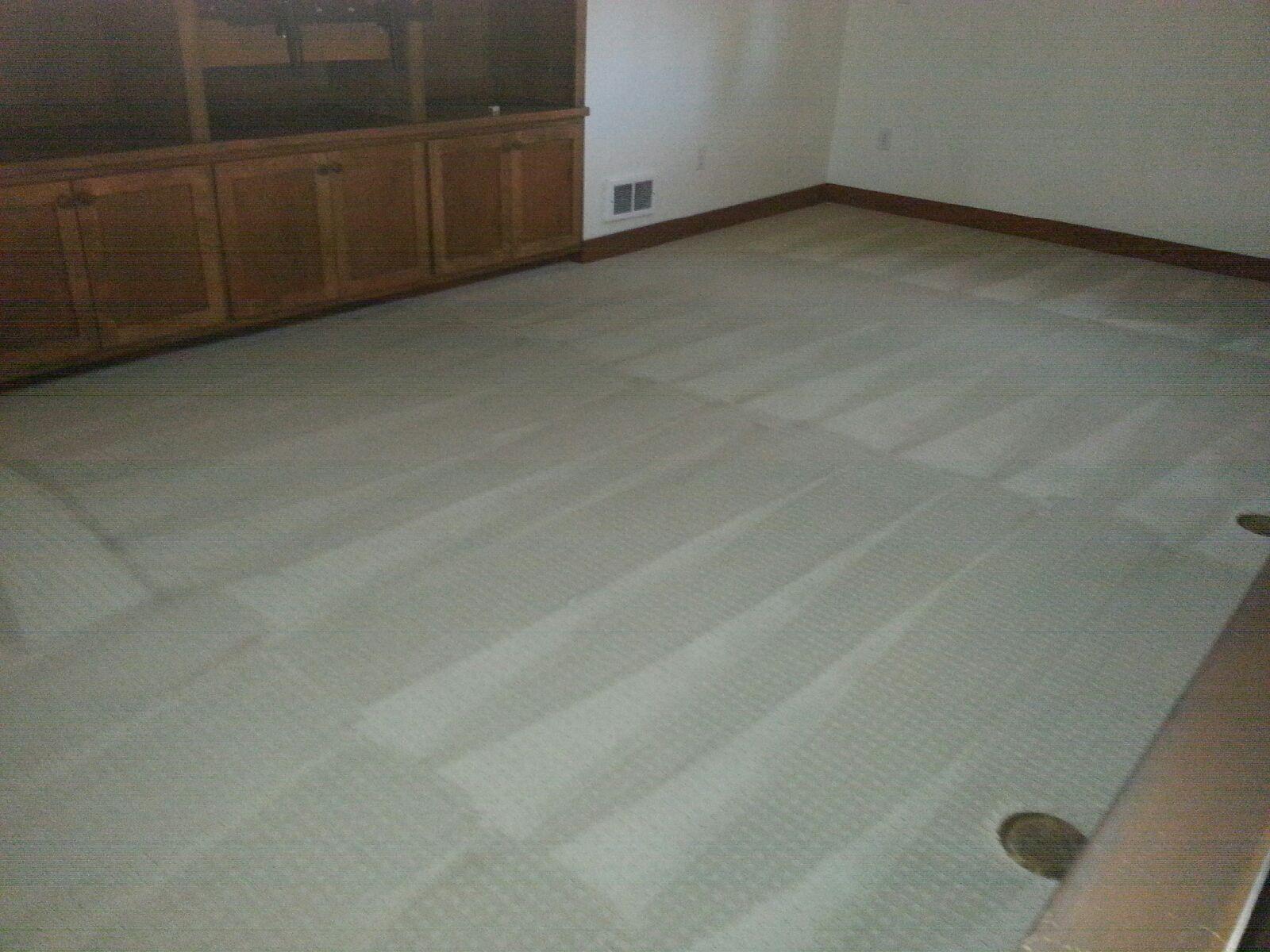 Anderson Carpet Wood Amp Tile Cleaning Seattle Washington