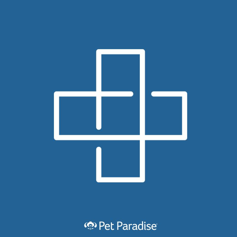 Pet Paradise Veterinary Hospital Jacksonville - Jacksonville, FL 32216 - (904)770-3337 | ShowMeLocal.com