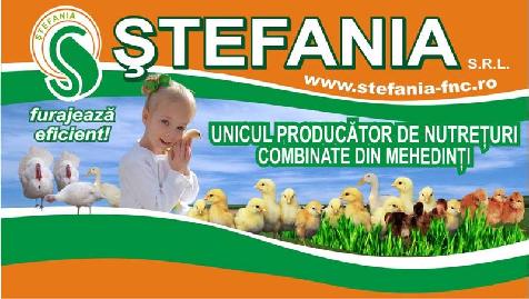 STEFANIA S.R.L