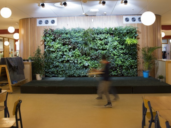 Roessink Interieurbeplanting
